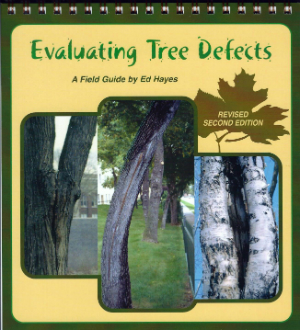 Evaluating Tree Defects by Ed Hayes